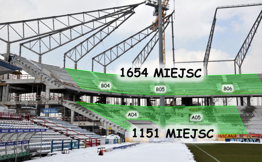 stadion_goscie