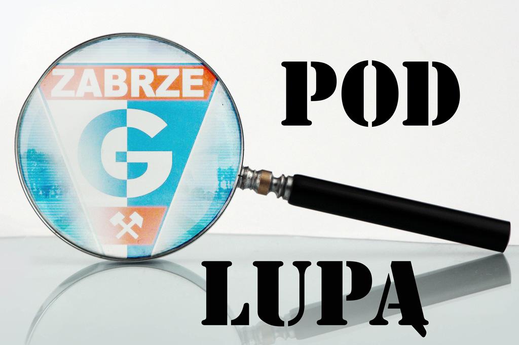 pod_lupa_2