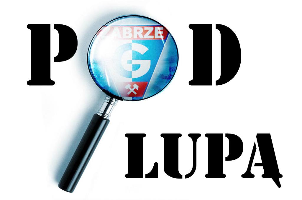 pod_lupa_3